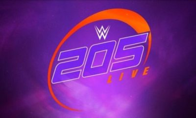 WWE 205 Live Improves its Audience with the Transfer on Wednesdays